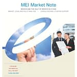 MEI report cover