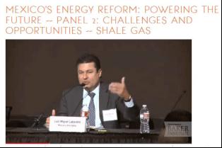 Luis Miguel Labardini, Energy Consultant